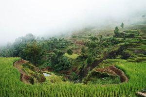 Indonesia_04.jpg